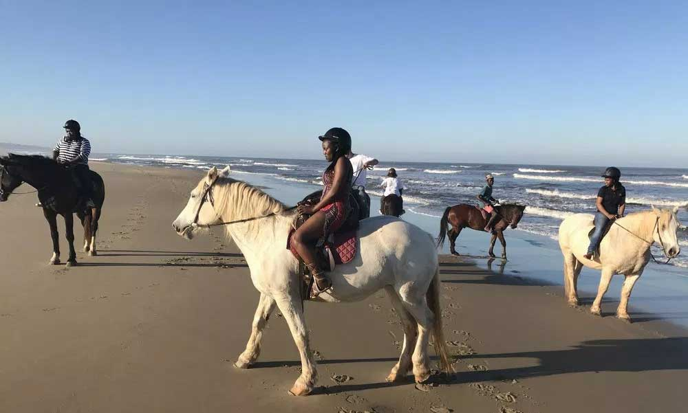 Selsdon Park Estate Horse riding Oribi Gorge-Albatross Guesthouse - Southbroom -South Coast things to Do